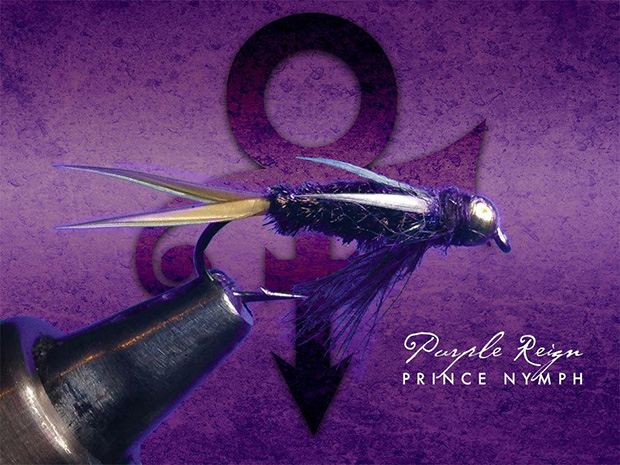 purple-reign-this-is-fly